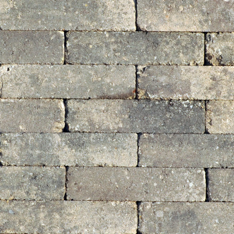 Abbeystones 20x5x7cm Gallo